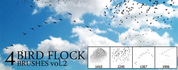 4 Bird Flock Brushes Vol 2