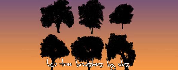 6 Tree Brush Set