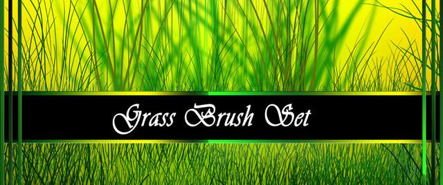 Grass Brush Set