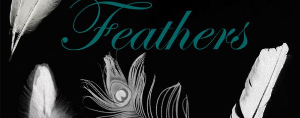 Feathers brush