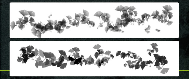 Ginko brushes