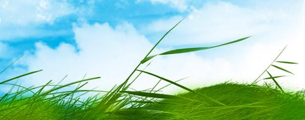 Grass volume 1
