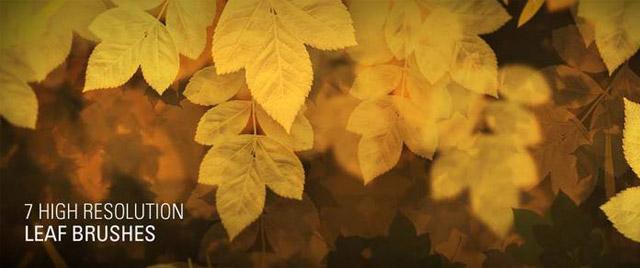 HD Leaf Brushes