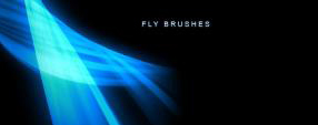 Fly Brushes