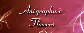 Anigraphuse Flowers 2
