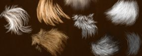 Brushes Fur part 3