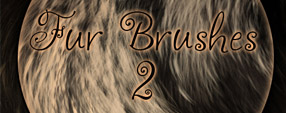 Brushes  Fur part 2
