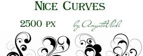 vector Nice Curves